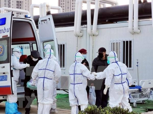 Indonesia supervisa a 70 trabajadores de salud ante sospecha de coronavirus hinh anh 1