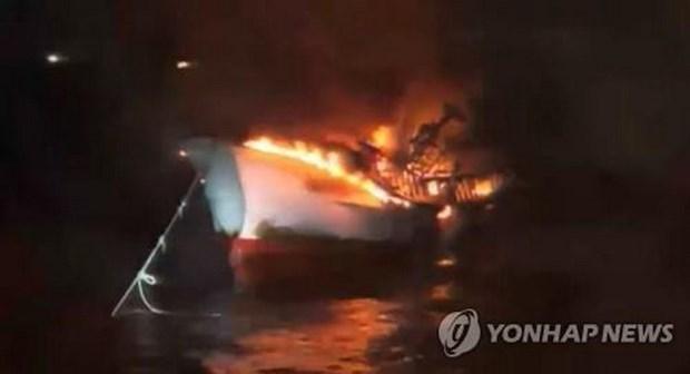 Cinco marineros vietnamitas desaparecidos en incendio de pesquero en Corea del Sur hinh anh 1