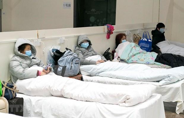 Registra Malasia 14 nuevos casos de COVID-19 hinh anh 1