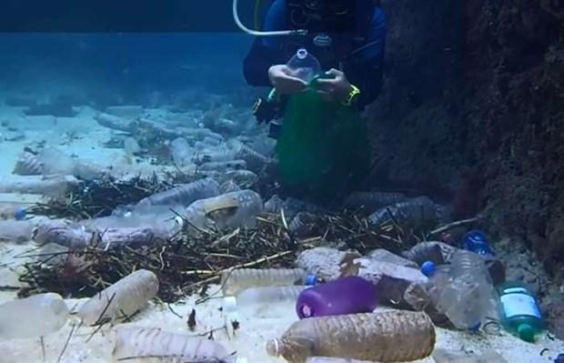Promueve Vietnam investigacion sobre ecosistemas marinos hinh anh 1