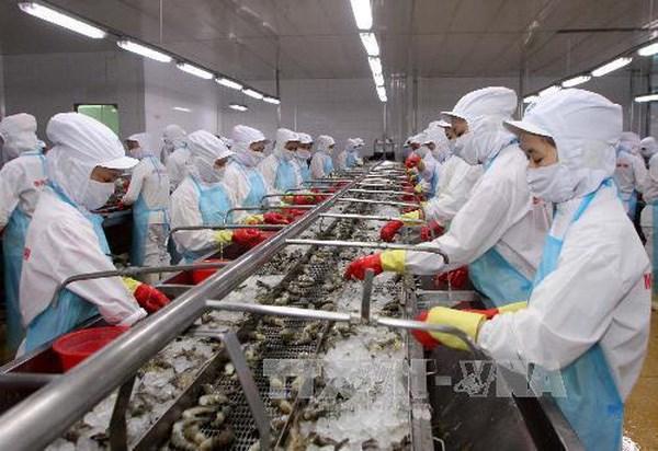 Enfrenta industria camaronera de Vietnam dificultades debido a impacto de COVID-19 hinh anh 1