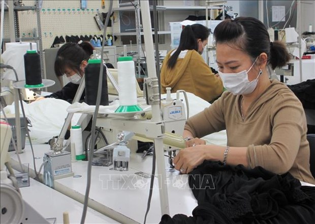Trabajadores vietnamitas en Japon reciben proteccion ante epidemia de COVID-19 hinh anh 1