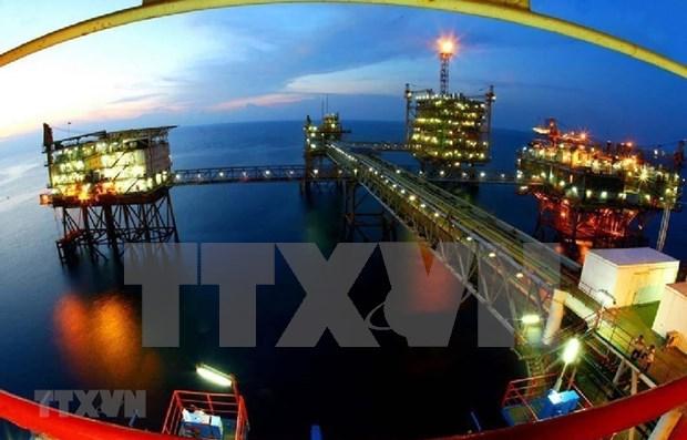 Explotacion petrolera de Vietnam supero en 11,5 por ciento la meta trazada para enero y febrero hinh anh 1