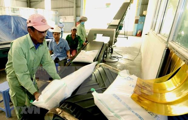 Exportaciones de arroz vietnamita aumentan 27 por ciento en primer bimestre del ano hinh anh 1