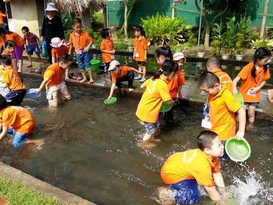 Hanoi por incentivar el ecoturismo agricola hinh anh 1