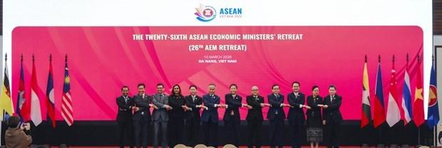 Refuerzan ASEAN resiliencia economica para afrontar COVID-19 hinh anh 1