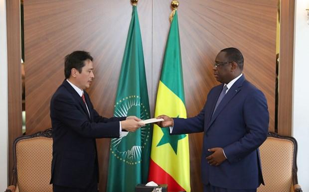 Desea Senegal estrechar lazos con Vietnam hinh anh 1