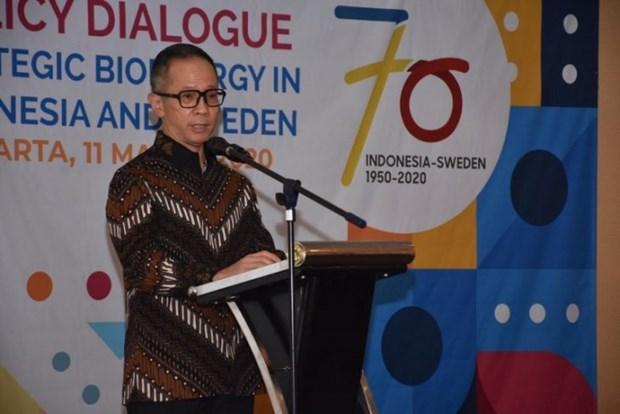 Rechaza Indonesia politica energetica de la Union Europea hinh anh 1