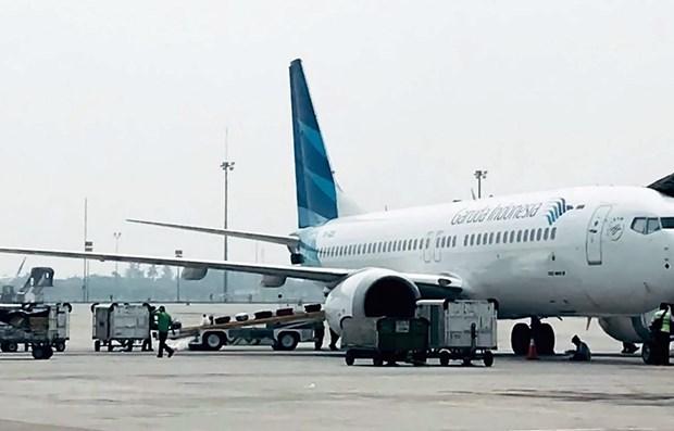 Pronostican creciente demanda de mantenimiento de aeronaves en Indonesia hinh anh 1