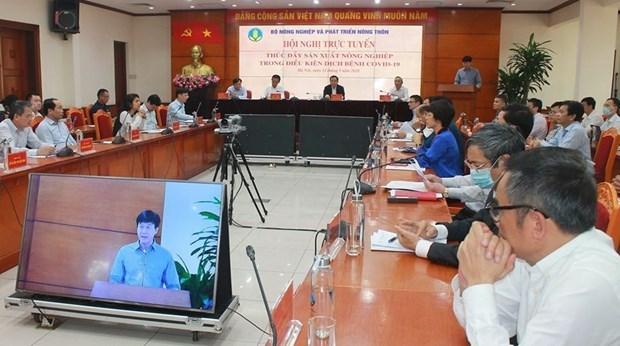 Vietnam aplica medidas para promover produccion agricola hinh anh 1