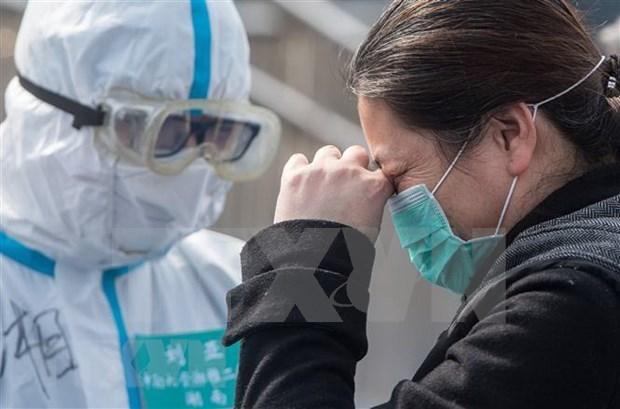 Incrementa Hanoi fondos para examen de deteccion del COVID-19 hinh anh 1