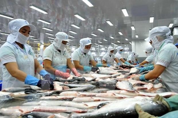 En alza exportaciones del pescado Tra vietnamita a Estados Unidos hinh anh 1