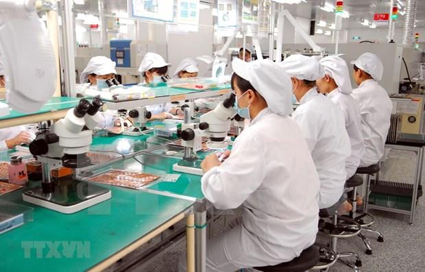 Ciudad Ho Chi Minh por mejorar calidad de trabajadores para programas en el exterior hinh anh 1