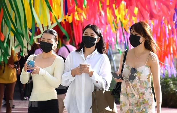 Epidemia afecta a miles de restaurantes en Tailandia hinh anh 1