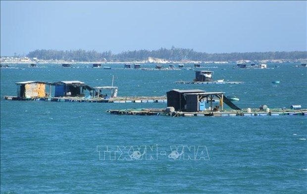 Adoptan plan para estudio de recursos naturales y entorno maritimo de Vietnam hinh anh 1