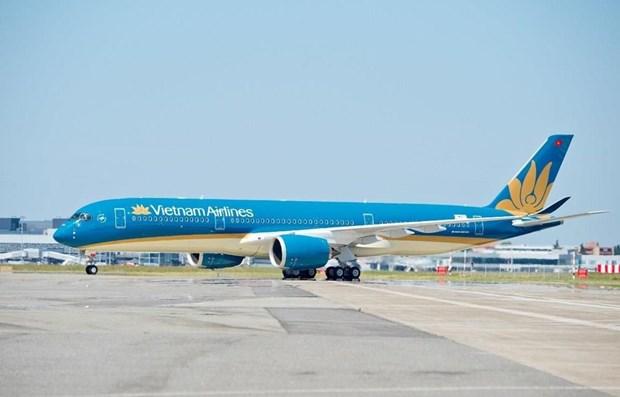 Vietnam Airlines suspende temporalmente operacion de rutas internacionales hinh anh 1