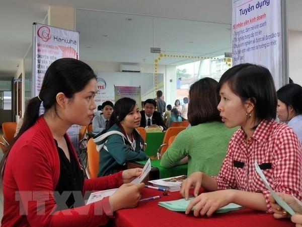 OIT reitera respaldo a Vietnam para minimizar impactos de epidemia a empresas y trabajadores hinh anh 1