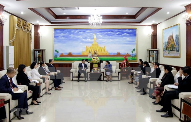 Vietnam felicita a Laos por el 65 aniversario de la fundacion del Partido Popular Revolucionario hinh anh 1
