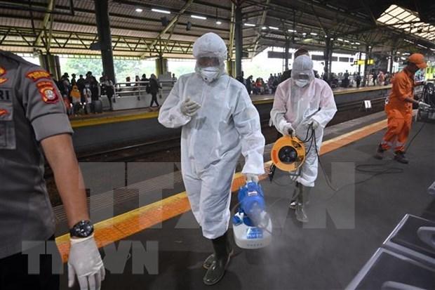 Elecciones regionales en Indonesia se celebraran segun lo previsto a pesar de epidemia hinh anh 1