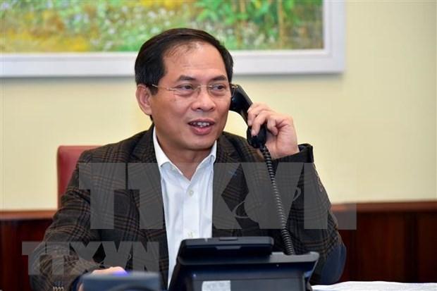 Concede Vietnam importancia a cooperacion internacional en lucha contra epidemia hinh anh 1