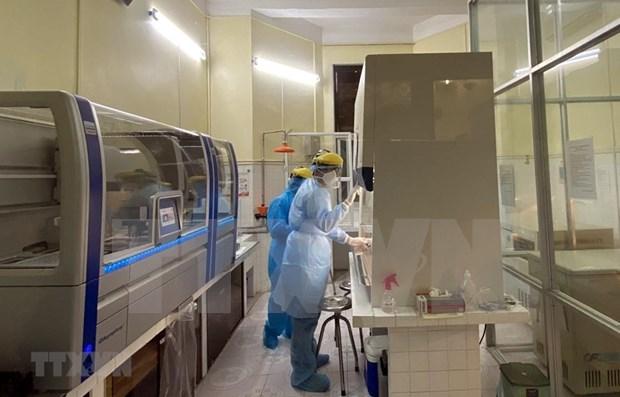 Cifras actualizadas de casos de coronavirus en Vietnam hinh anh 1