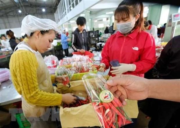 Aumentan exportaciones agricolas de Ciudad Ho Chi Minh en primer trimestre de 2020 hinh anh 1