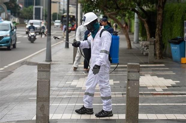 Recomiendan a vietnamitas en el exterior cumplir con medidas preventivas contra el COVID-19 hinh anh 1