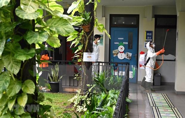 Tres doctores en Indonesia perdieron la vida por COVID-19 hinh anh 1
