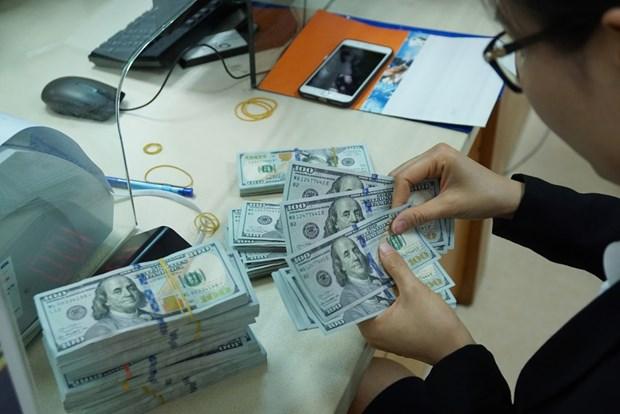 Banco Estatal de Vietnam gestiona estabilidad del mercado de divisas hinh anh 1