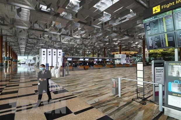 Asisten a vietnamitas varados en aeropuerto de Singapur hinh anh 1