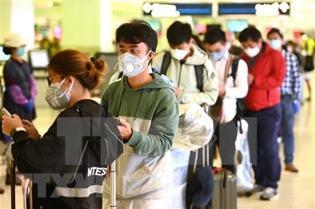 Embajada de Vietnam en Australia insta a connacionales a mantener la calma ante pandemia hinh anh 1