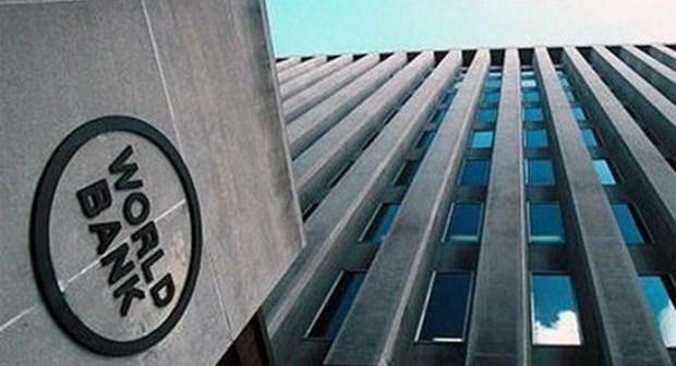 Banco Mundial suministra 300 millones de dolares a Indonesia para reforma financiera hinh anh 1