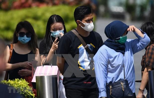 Singapur detiene actividades en centros de ocio hinh anh 1