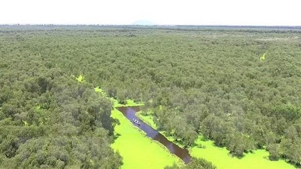 Dia Mundial del Medio Ambiente 2020 se centrara en la biodiversidad hinh anh 1