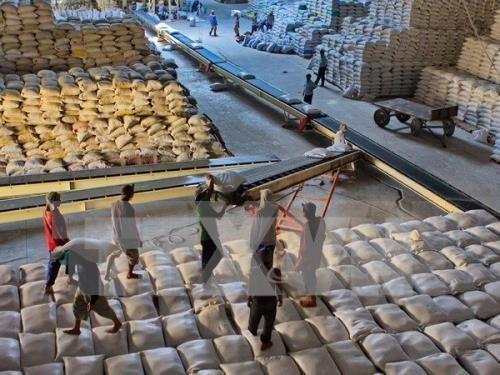Vietnam puede abastecerse de alimentos en cualquier situacion de emergencia hinh anh 1