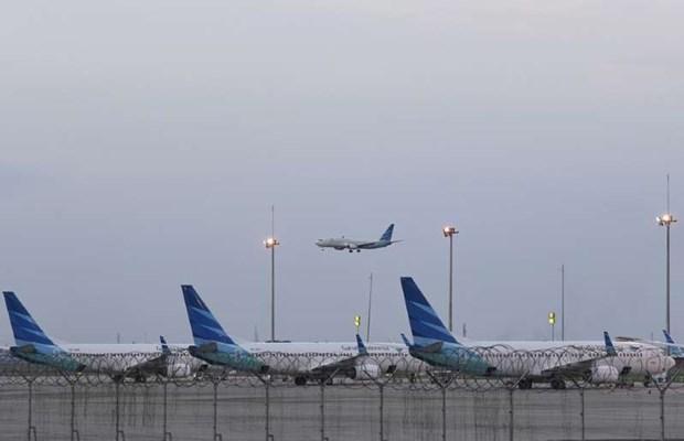 Aerolineas del Sudeste Asiatico reducen empleos ante amenaza de COVID-19 hinh anh 1