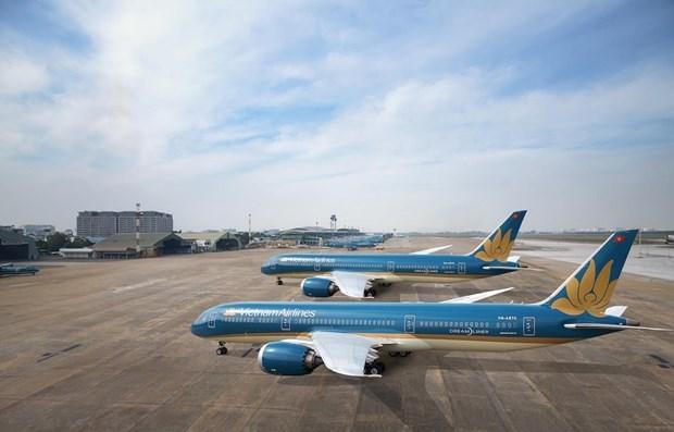 Recorta Vietnam Airlines vuelos nacionales hinh anh 1