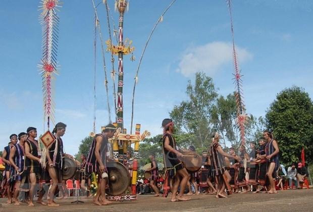 Efectuaran en Dak Lak Concurso Nacional de Instrumentos Tradicionales 2020 hinh anh 1