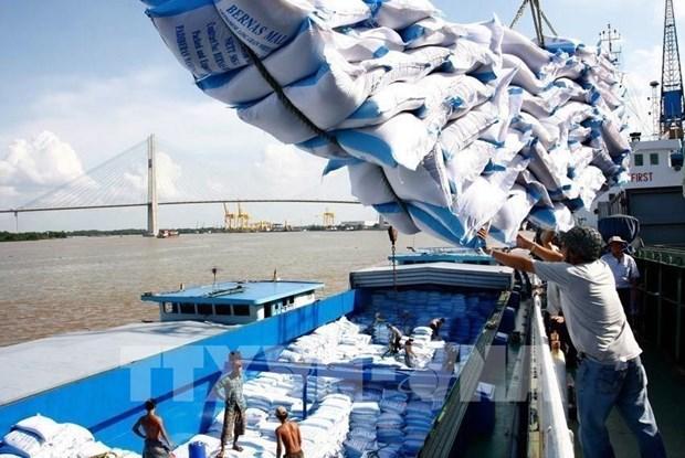 Vietnam por garantizar el suministro interno de arroz hinh anh 1