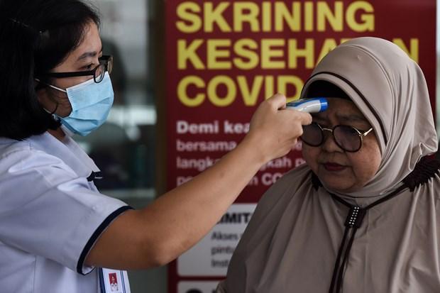 Indonesia entrara pronto a nueva fase del combate contra la pandemia hinh anh 1