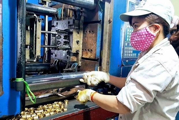 Economia de Vietnam crecera 5,32 por ciento en 2020, anticipa experto hinh anh 1