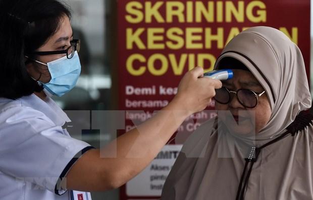 Indonesia usa kit de prueba de tuberculosis para detectar SARS-CoV-2 hinh anh 1