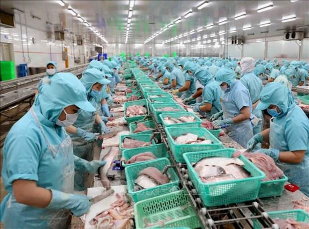 Sector acuicola de Vietnam enfrenta dificultades por COVID-19 hinh anh 1