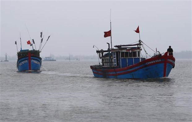 Vietnam rechaza ataque a sus pescadores por policia maritima china hinh anh 1