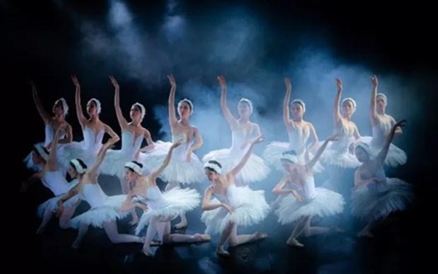 Concurso de Talentos del Baile 2020 se celebrara en Vietnam en octubre hinh anh 1