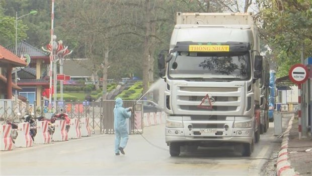 Refuerza Vietnam control de trasporte de mercancias por puertas fronterizas hinh anh 1