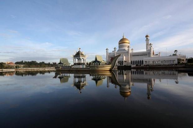 Brunei realiza pruebas gratuitas de coronavirus para trabajadores migrantes hinh anh 1