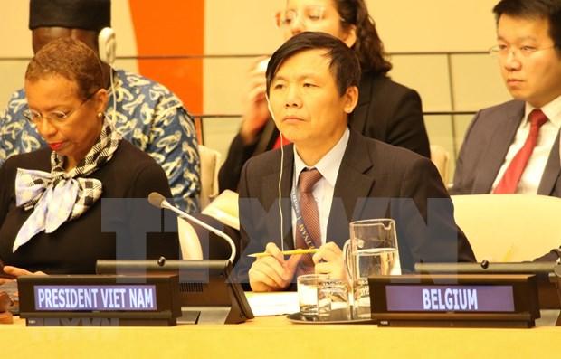 Vietnam llama a garantizar seguridad de civiles malienses hinh anh 1