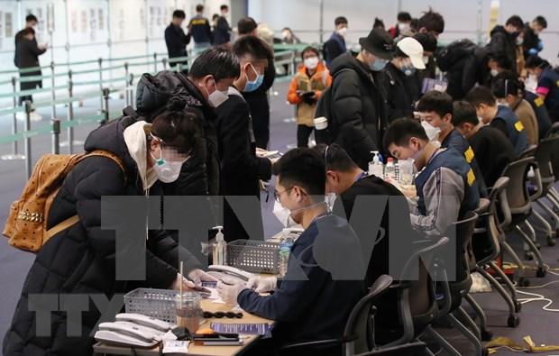 Vietnam informado por Corea del Sur sobre reajustes de politicas de visado hinh anh 1