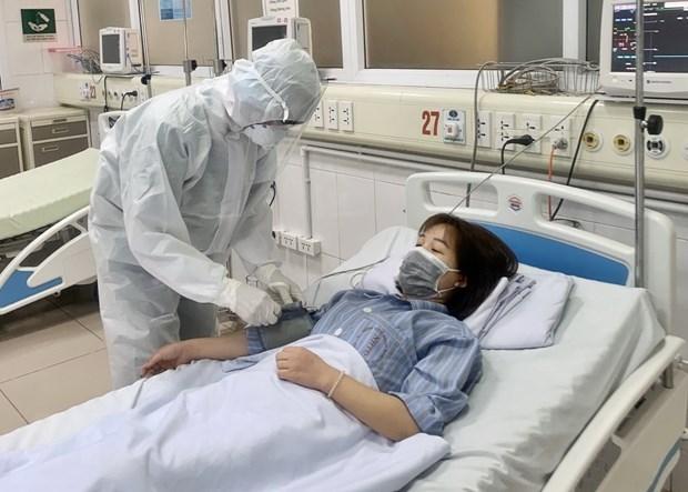 Vietnam registra 262 casos de infeccion del COVID-19 hinh anh 1